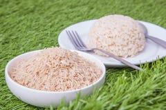 Raw jasmine brown rice Stock Photography