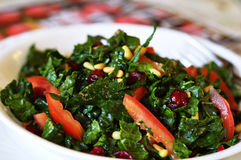 Raw Kale Salad Stock Photography