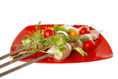 Raw kebabs on red plate Royalty Free Stock Image