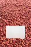 Raw Kidney Beans Stock Image