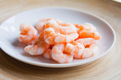 Raw king prawns, ceviche Stock Images