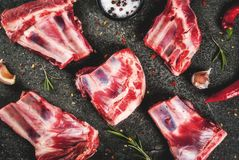 Raw lamb or beef ribs. Raw fresh meat, uncooked lamb or beef ribs with hot pepper, garlic and spices on dark stone background, copy space top view Royalty Free Stock Photography