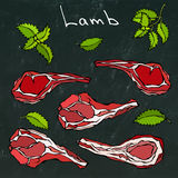 Raw Lamb Chop Ribs Set. Realistic Hand Drawn Doodle Style Sketch.Vector Illustration Isolated on a Black Chalkboard Royalty Free Stock Image