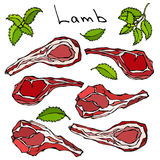 Raw Lamb Chop Ribs Set. Realistic Vector Illustration Isolated Hand Drawn Doodle or Cartoon Style Sketch. Fresh Meat Royalty Free Stock Image