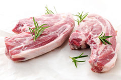 Raw lamb chops. Two raw fresh lamb chops with rosemary herb royalty free stock photo