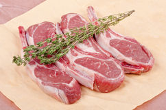 Raw Lamb Chops. Five frenched lamb chops and fresh thyme Royalty Free Stock Images