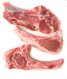 Raw lamb chops Stock Image