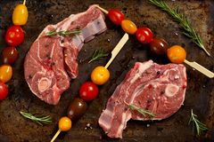 Raw Lamb Chops. With cherry tomato and rosemary herb ready to cook. Selective focus Royalty Free Stock Photography