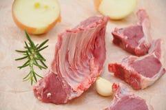 Raw Lamb Chops Royalty Free Stock Photo