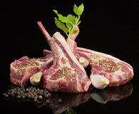 Raw lamb chops with spices and herbs. Isolated on black background Royalty Free Stock Photo
