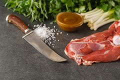 Raw lamb meat with spices on wood board over old wooden backgrou. Nd. Close up, selective focus Stock Images