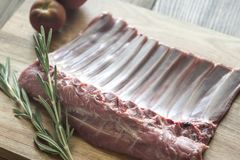 Raw lamb ribs with fresh rosemary Stock Images