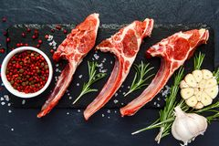 Raw lamb ribs with ingredients for cooking on dark table. Raw fresh meat, uncooked lamb ribs with ingredients for cooking. On dark table, copy space top view Royalty Free Stock Photos