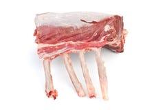 Raw Lamb Ribs Isolated Stock Photos