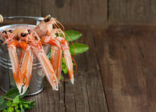 Raw langoustine in a bucket with herbs. On wood Royalty Free Stock Images