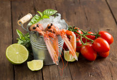 Raw langoustine in a bucket with vegetables and herbs. On wood Royalty Free Stock Images