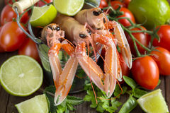 Raw langoustine in a bucket with vegetables. And herbs on wood Royalty Free Stock Images