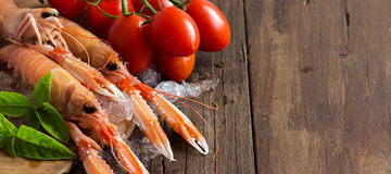 Raw langoustine on ice with tomatoes and basil. On wood Royalty Free Stock Images