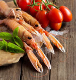 Raw langoustine on ice with tomatoes and basil. On wood Royalty Free Stock Photo