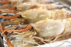 Raw langoustine prawns Royalty Free Stock Photo
