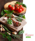 Raw lasagna pasta, vegetables and herbs Royalty Free Stock Images