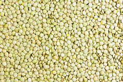 Raw lentil background Royalty Free Stock Images
