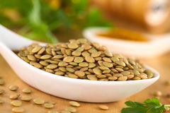 Raw Lentils Royalty Free Stock Image