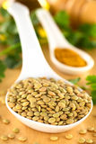 Raw Lentils Royalty Free Stock Photo