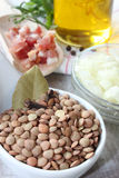 Raw lentils Stock Images