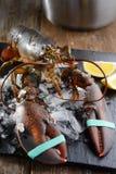 Raw Lobster Royalty Free Stock Photos
