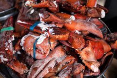 Raw lobster claws in bow Royalty Free Stock Images