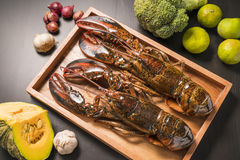 Raw lobster on wooden plate. Whole raw lobster. Raw lobster on wooden plate. raw crayfish on wooden plate Royalty Free Stock Images
