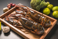 Raw lobster on wooden plate. Whole raw lobster. Raw lobster on wooden plate. raw crayfish on wooden plate Royalty Free Stock Image