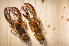 Raw lobster on wooden plate. Whole raw lobster. Raw lobster on wooden plate. raw crayfish on wooden plate Royalty Free Stock Photography