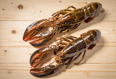 Raw lobster on wooden plate. Whole raw lobster. Raw lobster on wooden plate. raw crayfish on wooden plate Royalty Free Stock Photos