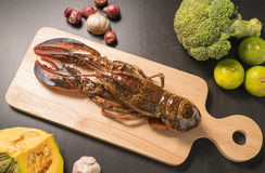 Raw lobster on wooden plate. Whole raw lobster. Raw lobster on wooden plate. raw crayfish on wooden plate Stock Photography