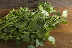 Raw lovage plant Royalty Free Stock Photos