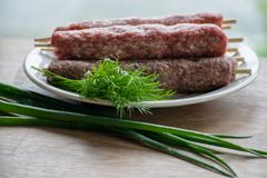 Raw lulya kebab from meat on a white plate with with dill and green onions. Raw lulya kebab from meat on a white plate Royalty Free Stock Images