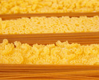Raw macaroni collection Royalty Free Stock Photos