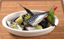 Raw mackerel. Pieces of raw mackerel in a casserole dish Stock Image