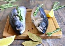 Raw mackerel. Raw mackerel on a cutting board Stock Photography