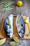 Raw mackerel. Raw mackerel on a cutting board Stock Images