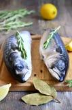 Raw mackerel. Raw mackerel on a cutting board Royalty Free Stock Photos