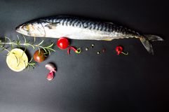Raw mackerel fish and cooking ingredients. On dark table Stock Images