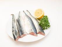 Raw mackerel fish filet Stock Photos