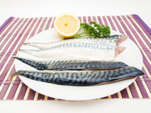 Raw mackerel fish filet. On white plate with half a lemon and parsley on purple wooden table cover Royalty Free Stock Photography