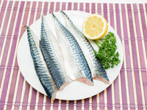 Raw mackerel fish filet. On white plate with half a lemon and parsley on purple wooden table cover Royalty Free Stock Photos