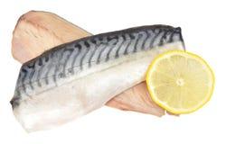 Raw Mackerel Fish Fillets Stock Image