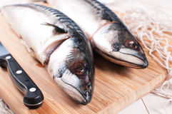 Raw mackerel fish with knife Royalty Free Stock Photography