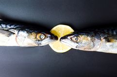Raw mackerel fish and lemon. Close up Royalty Free Stock Photo